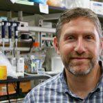 Nathan M. Sherer, PhD